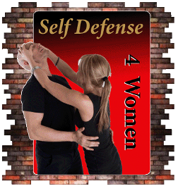 Can you learn krav maga from video